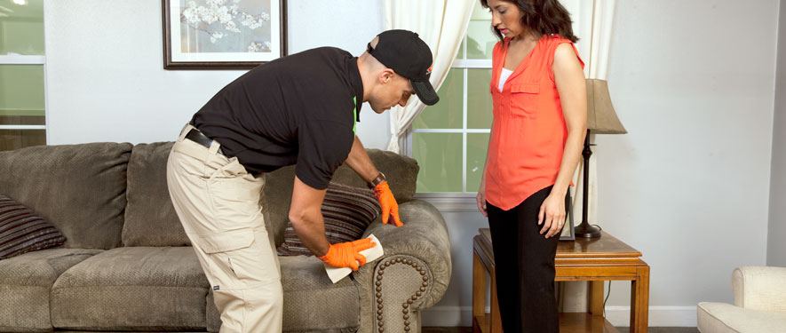 Bel Air, MD carpet upholstery cleaning